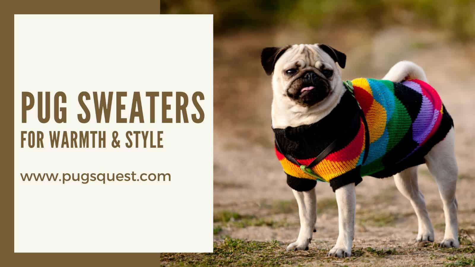 pug sweaters