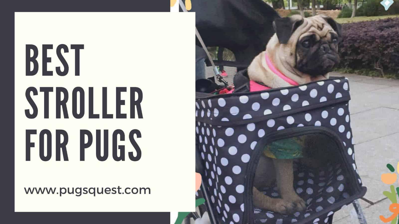 best dog stroller for pugs