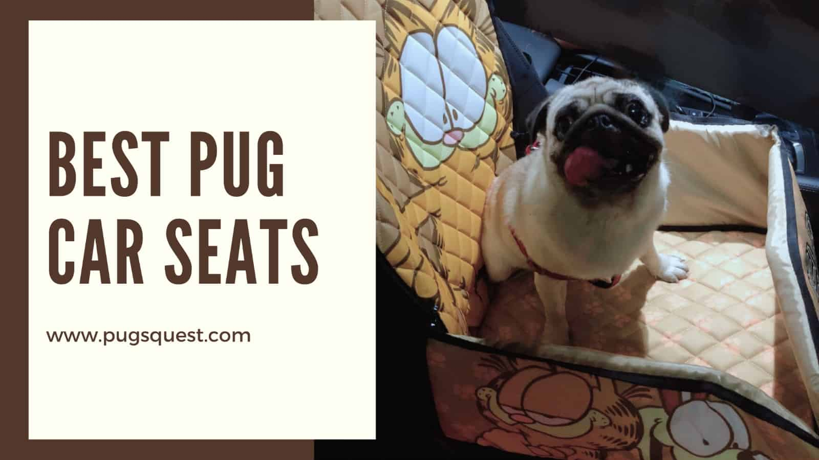 best car seats for pugs
