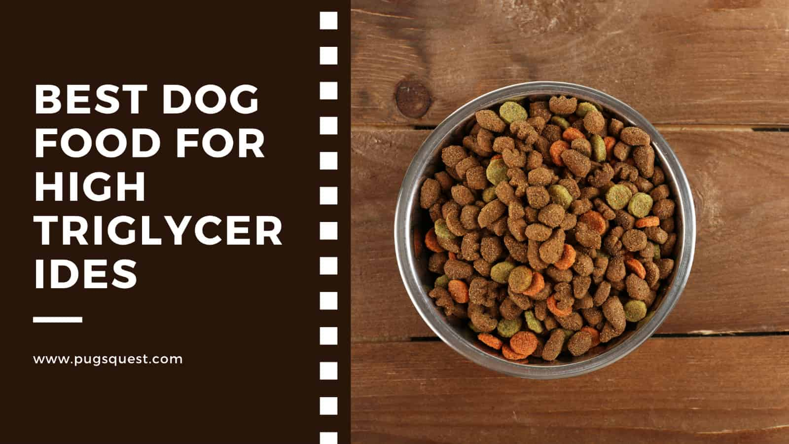 Best Dog Food for High Triglycerides