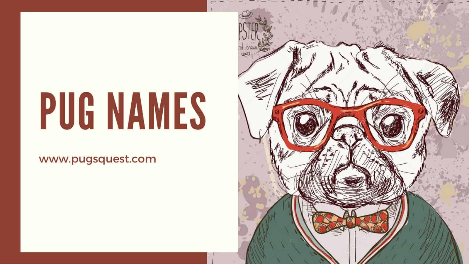 Pug names
